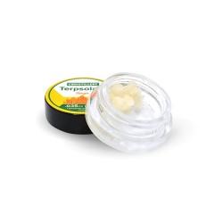 CBDistillery Terpsolate (Botanical) 1 gram - TANGIE